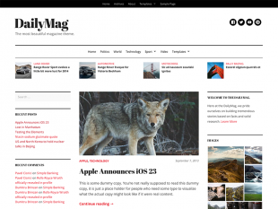DailyMag Theme